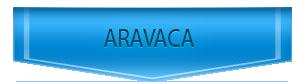 Servicio Técnico de calderas Chaffoteaux en Aravaca
