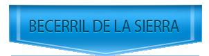 Servicio Tecnico de calderas Vaillant en Becerril de la Sierra