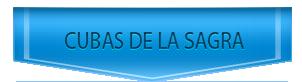 Servicio Tecnico de Saunier Duval en Cubas de la Sagra