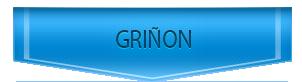 Servicio Técnico de calderas Chaffoteaux en Griñón