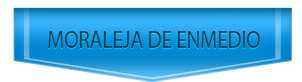 Servicio Tecnico de Saunier Duval en Moraleja de Enmedio