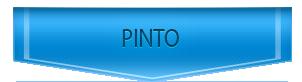 Servicio Tecnico de Junkers en Pinto