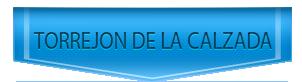 Servicio Tecnico de calderas Vaillant en Torrejón de la Calzada