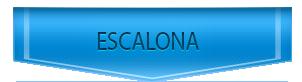Servicio Tecnico de BaxiRoca en Escalona
