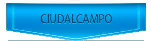 Servicio Tecnico de calderas Roca en Ciudalcampo