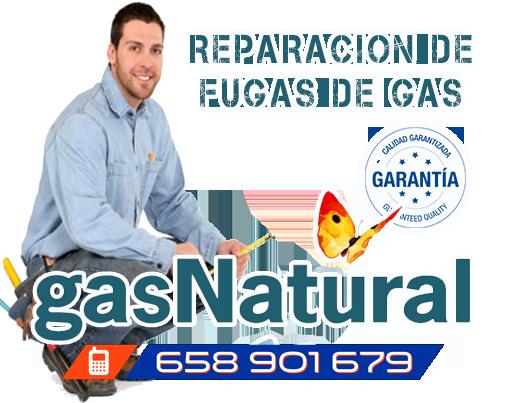 Reparación de fugas de gas con resultados garantizados